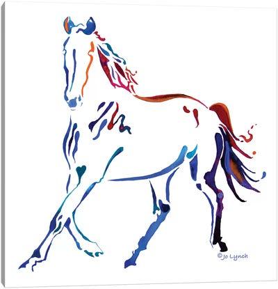Horse Many Colors III Canvas Art Print