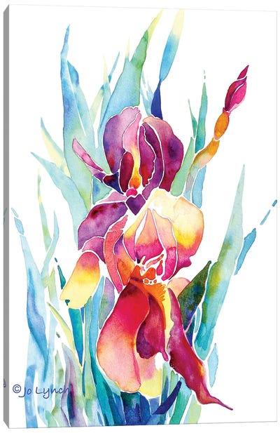 Iris Flower Canvas Art Print