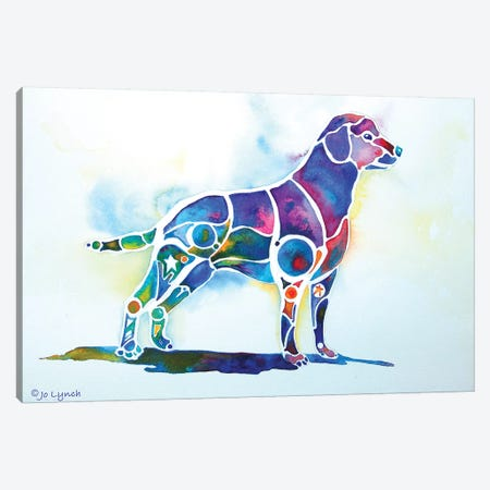 Labrador Retriever Canvas Print #JLY106} by Jo Lynch Canvas Print