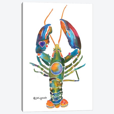 Lobster Maine Canvas Print #JLY109} by Jo Lynch Canvas Artwork