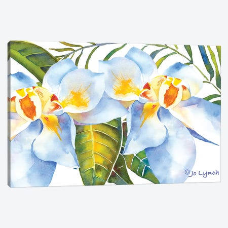 Magnolia w Leaves 3-Piece Canvas #JLY110} by Jo Lynch Art Print