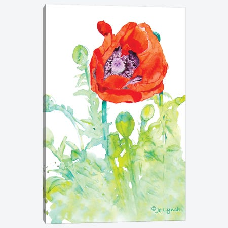 Poppy Art Flower Canvas Print #JLY123} by Jo Lynch Canvas Artwork