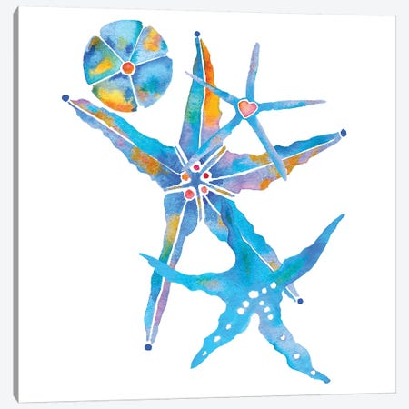 Three Starfish And A Sand Dollar Canvas Print #JLY143} by Jo Lynch Canvas Art