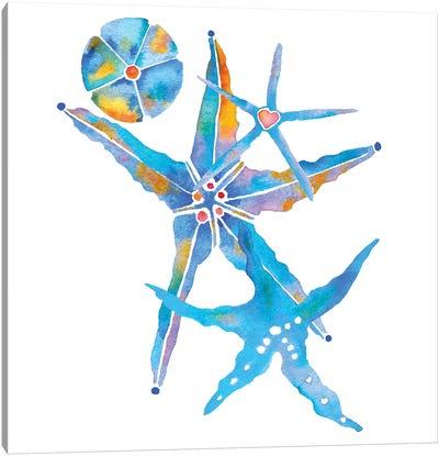 Three Starfish And A Sand Dollar Canvas Art Print