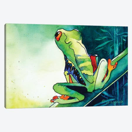 Tree Frog Green II Canvas Print #JLY149} by Jo Lynch Canvas Art
