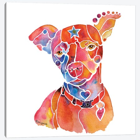 Rescue Dog Mooch Canvas Print #JLY50} by Jo Lynch Canvas Artwork