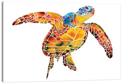 Sea Turtle I Canvas Art Print
