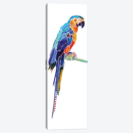Tropical Parrot I Canvas Print #JLY60} by Jo Lynch Canvas Art Print