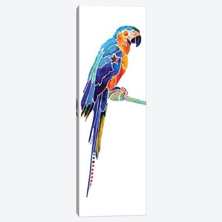 Tropical Parrot I Canvas Print #JLY60} by Jo Lynch Canvas Art Print