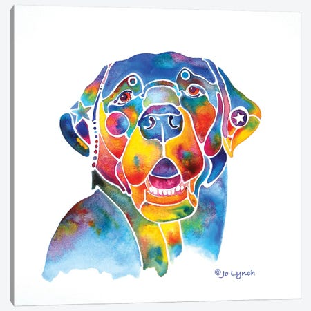 Black Labrador Lab Canvas Print #JLY77} by Jo Lynch Canvas Art Print