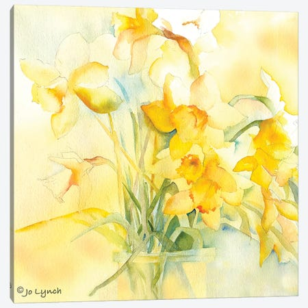 Daffodil Spring Canvas Print #JLY86} by Jo Lynch Canvas Art