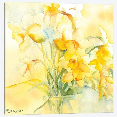 Daffodil Spring Canvas Print #JLY86} by Jo Lynch Canvas Art