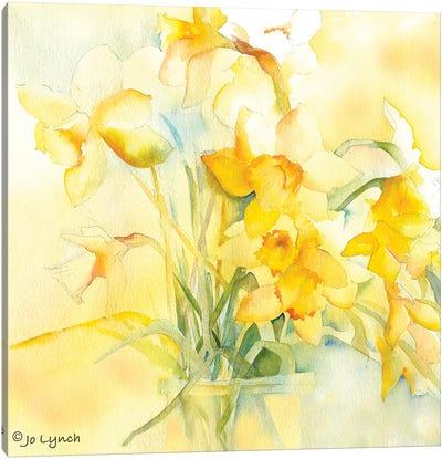 Daffodil Spring Canvas Art Print