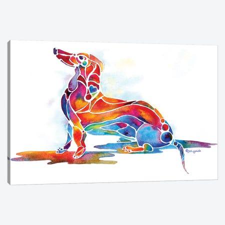 Doxie Dachshund Dog Canvas Print #JLY88} by Jo Lynch Canvas Print
