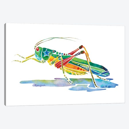 Grasshopper Insects Canvas Print #JLY96} by Jo Lynch Canvas Art Print