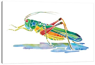 Grasshopper Insects Canvas Art Print