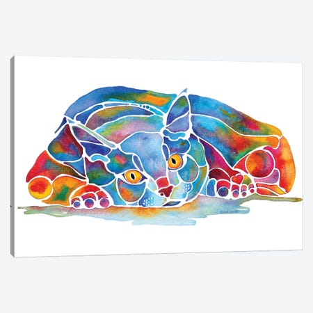 Calypso Cat Canvas Print #JLY9} by Jo Lynch Art Print