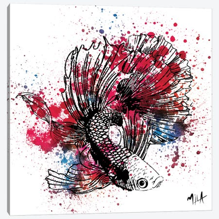 Color Fish, White  Canvas Print #JMB1} by Julie Mila-Bouffard Canvas Wall Art