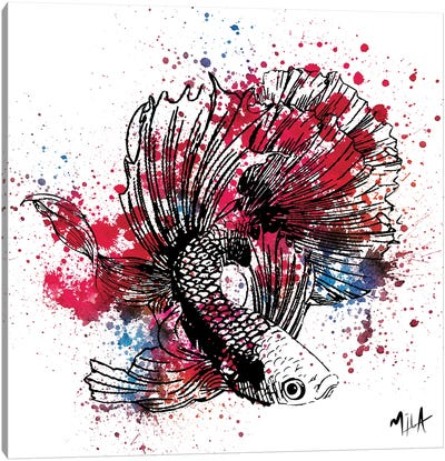 Color Fish, White  Canvas Art Print
