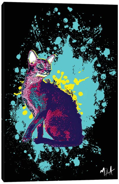 CrazyCat Canvas Art Print