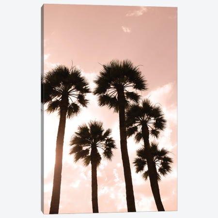 Palm trees. Luxor, Egypt. Canvas Print #JMC20} by Julien McRoberts Canvas Art