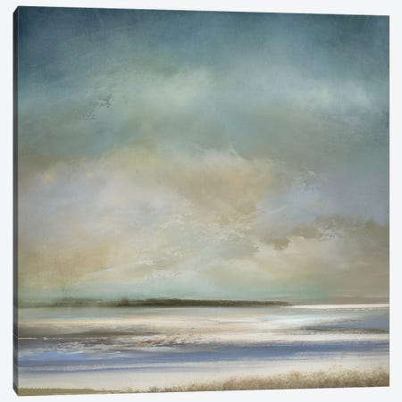 The Morning Shore Canvas Print #JME13} by Jake Messina Canvas Art Print