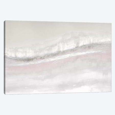 Flowing Blush Canvas Print #JME25} by Jake Messina Canvas Art Print