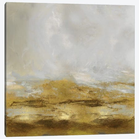 Golden Terra Canvas Print #JME3} by Jake Messina Canvas Art Print