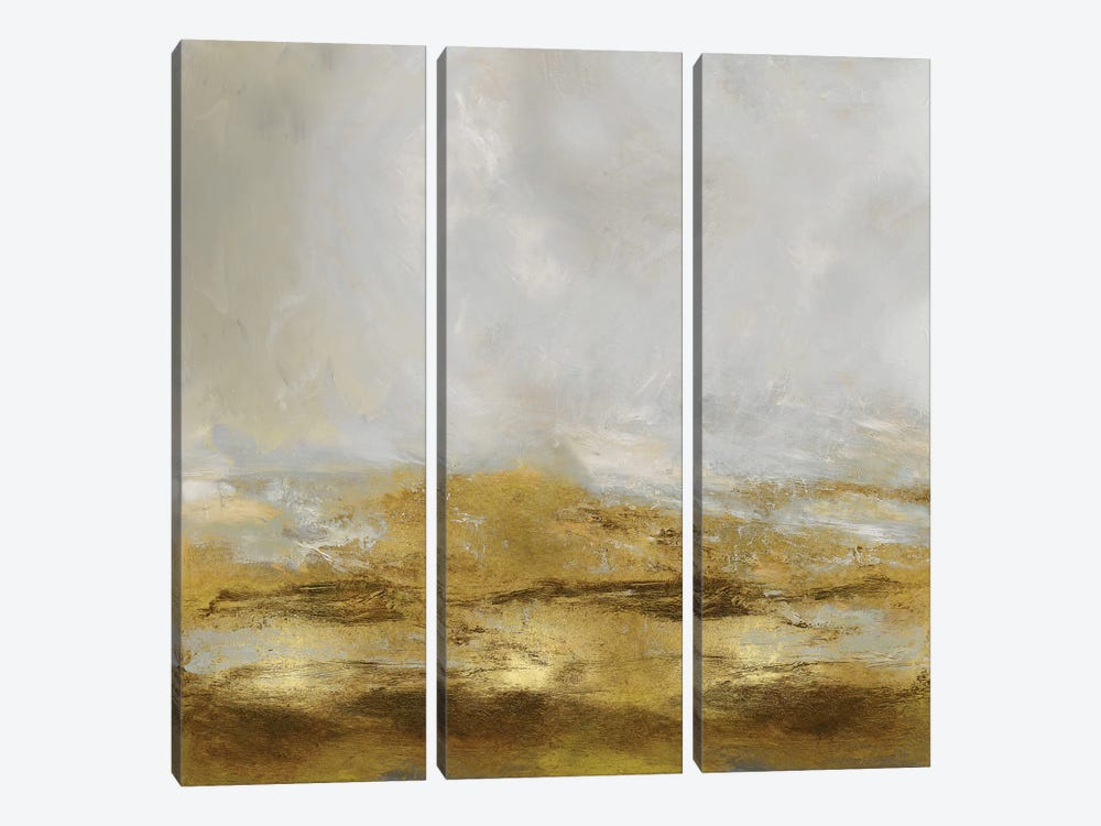 Golden Terra by Jake Messina 3-piece Canvas Art Print