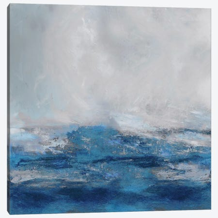 Terra in Blues Canvas Print #JME46} by Jake Messina Art Print