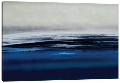 Midnight Vista Canvas Art Print