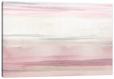 Blush Perspective III Canvas Art Print