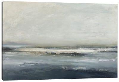 Land And Sky IV Canvas Art Print