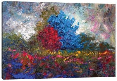 Landscape II Canvas Art Print