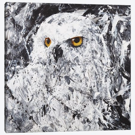 Owl III Canvas Print #JMF60} by Joseph Marshal Foster Canvas Print