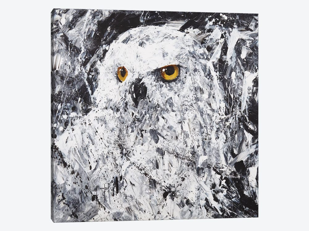 Owl III by Joseph Marshal Foster 1-piece Canvas Artwork