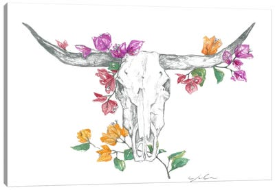 Cow Skull II Canvas Art Print