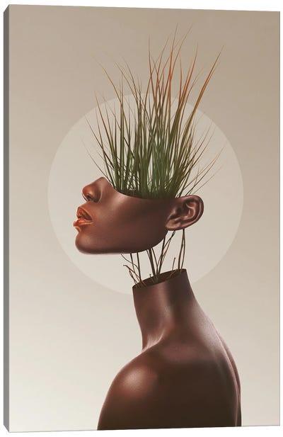 Sationem Vitae Canvas Art Print