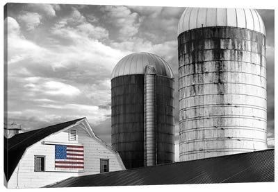 Flags of Our Farmers II Canvas Art Print
