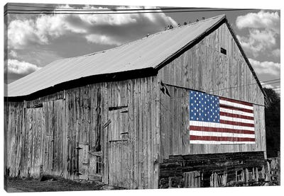 Flags of Our Farmers IV Canvas Art Print
