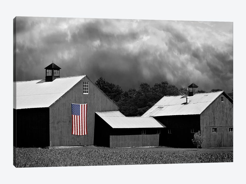 Flags of Our Farmers XV by James McLoughlin 1-piece Art Print