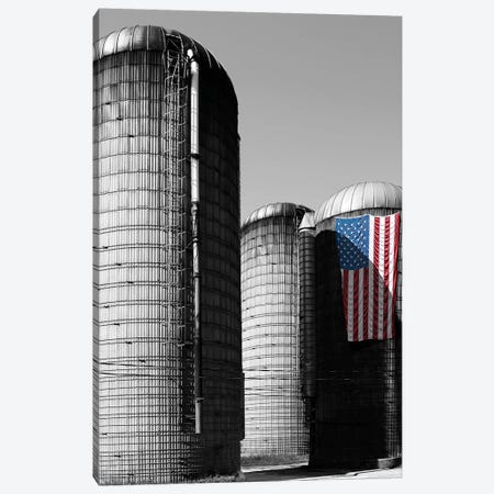 Flags of Our Farmers XX 3-Piece Canvas #JML118} by James McLoughlin Canvas Artwork