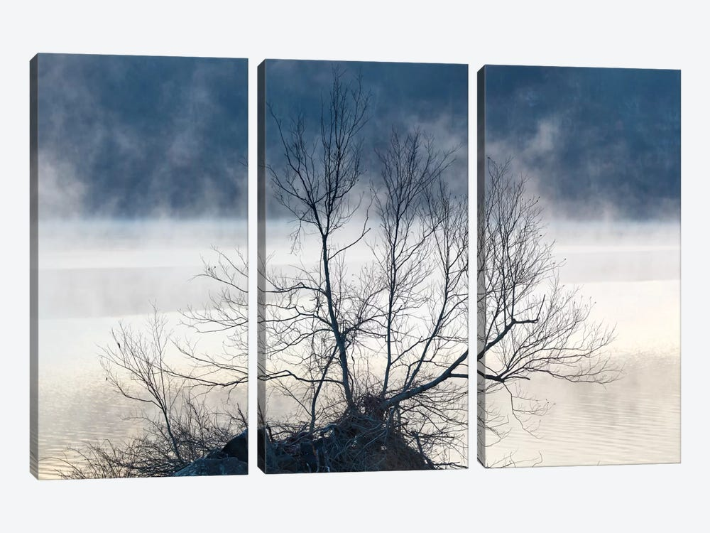 Scene On The Water VII by James McLoughlin 3-piece Canvas Art