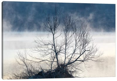 Scene On The Water VII Canvas Art Print