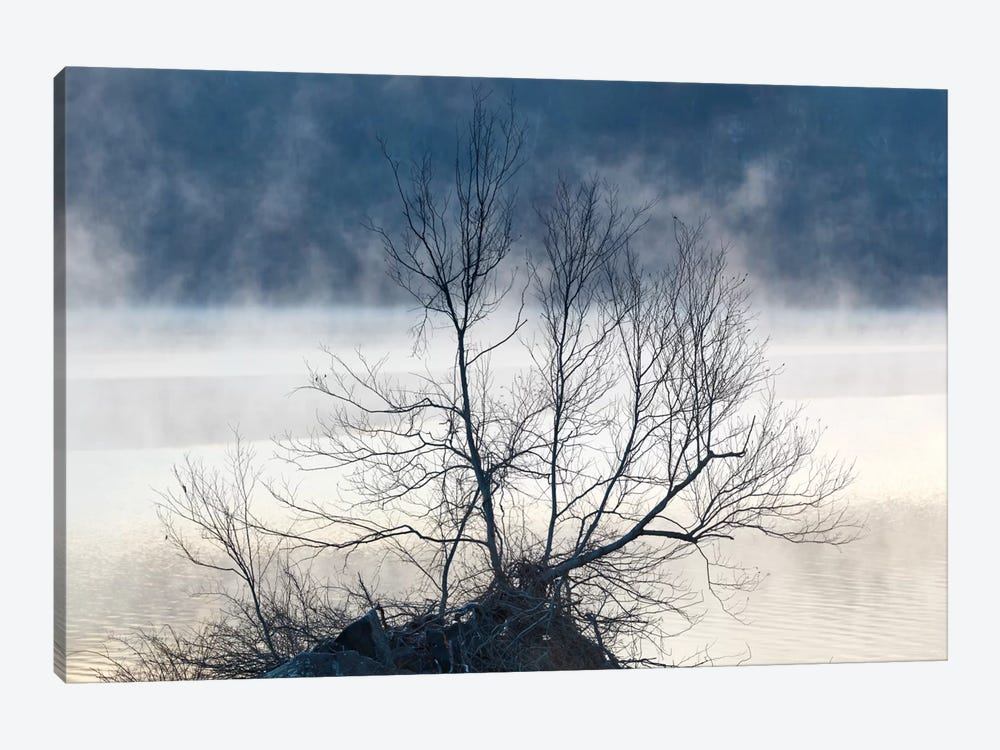 Scene On The Water VII by James McLoughlin 1-piece Canvas Art