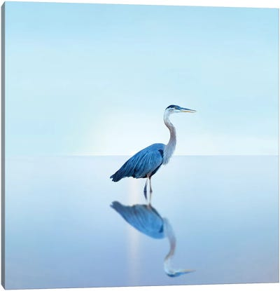 Beachscape Heron II Canvas Art Print