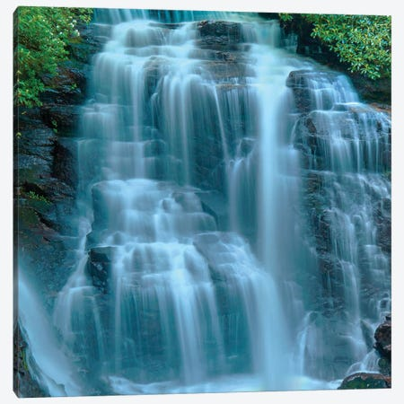 Waterfall Portrait III Canvas Print #JML206} by James McLoughlin Canvas Print