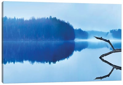 Reflections Canvas Art Print