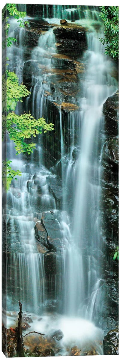 Vertical Falls I Canvas Art Print