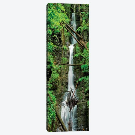 Vertical Falls II Canvas Print #JML218} by James McLoughlin Canvas Art Print